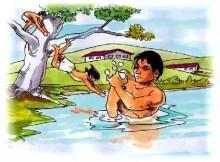 doenças transmitidas pela água