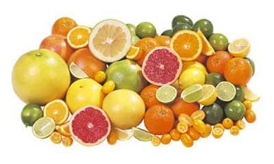 fatos sobre frutas
