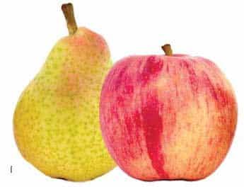 dicas de frutas que aumentam o metabolismo