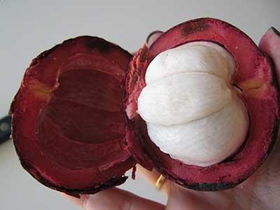 dicas de frutas exóticas
