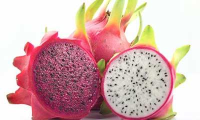 dicas de frutas